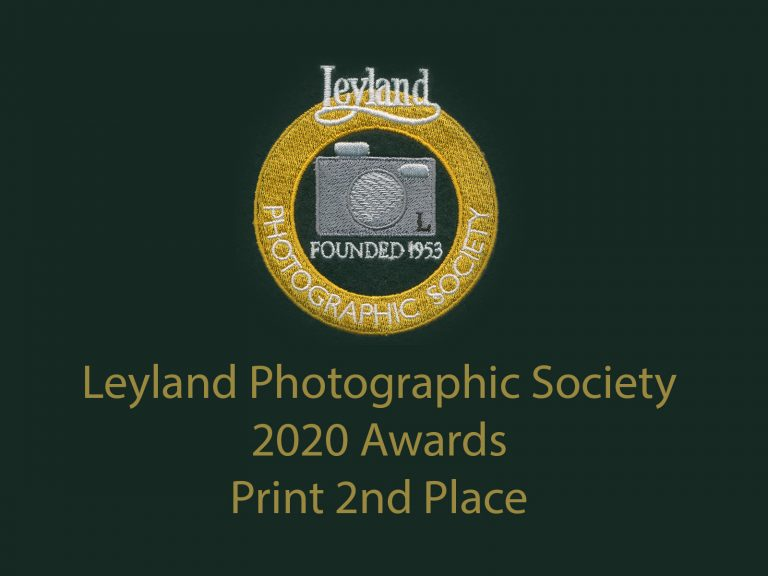 LPS awards 2020 print 2nd
