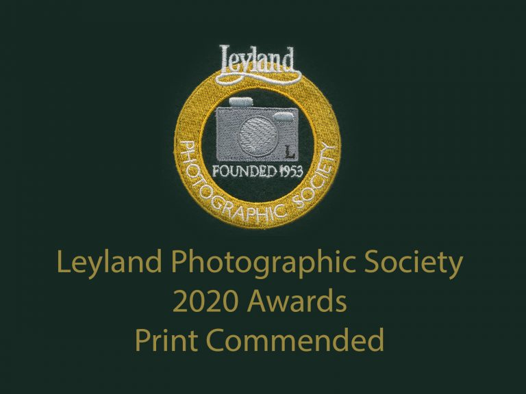 LPS awards 2020 Print Commended