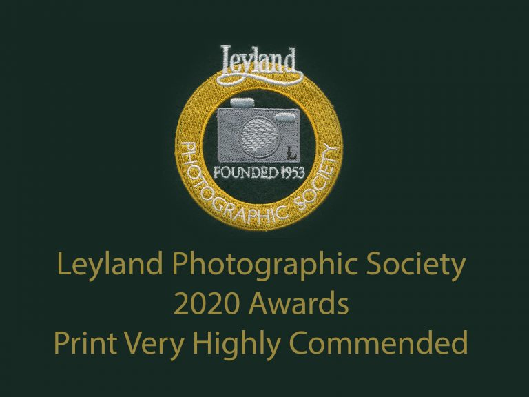 LPS awards 2020 Print VHC