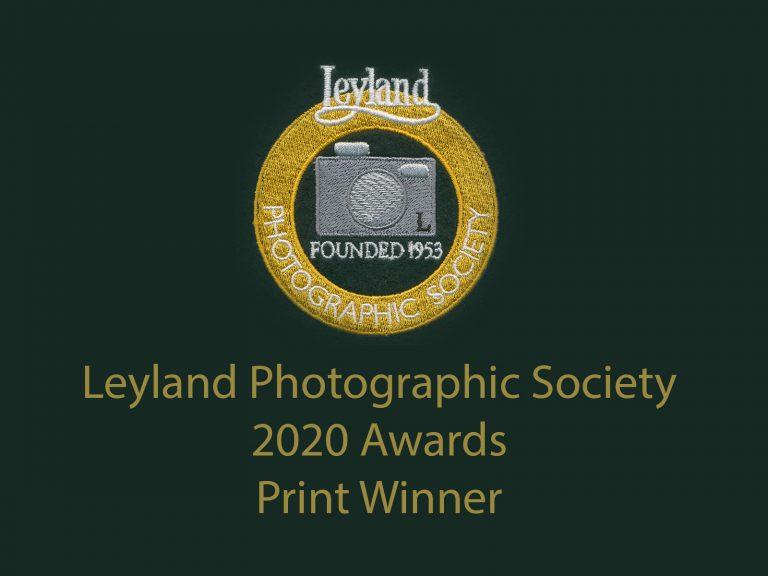 LPS awards 2020 print winner