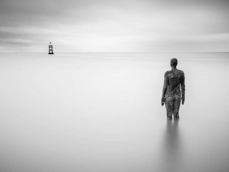 Print Highly Commended_Alone by David Robinson