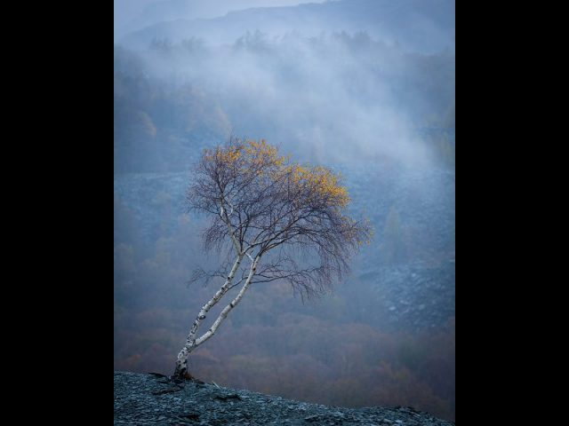 Dave Robinson: Best Colour Print, Best Landscape and 1st Place Advanced Prints