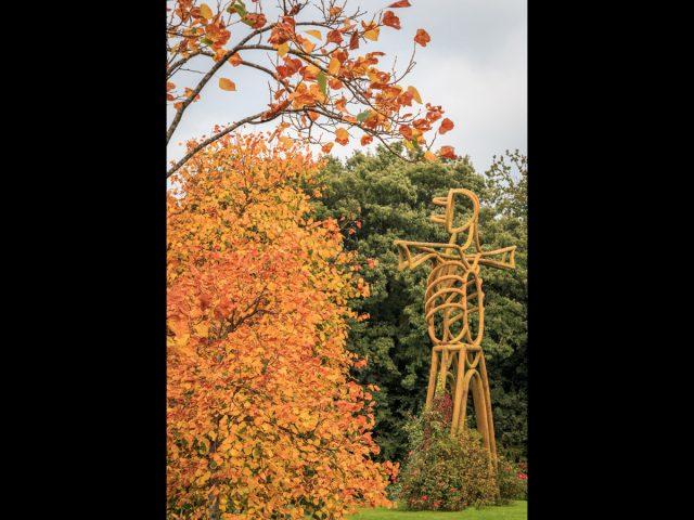 1018 Buckshaw in Autumn