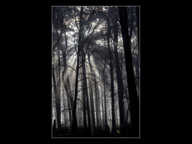 Paul Moran_Breaking Through