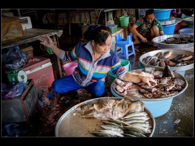 1st Place Theme - Food_Robert Hume_Fish Market