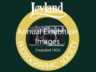 Leyland PS logo annual 4x3